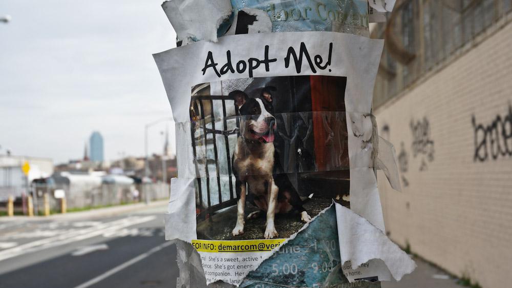 new-york-graffiti-04618
