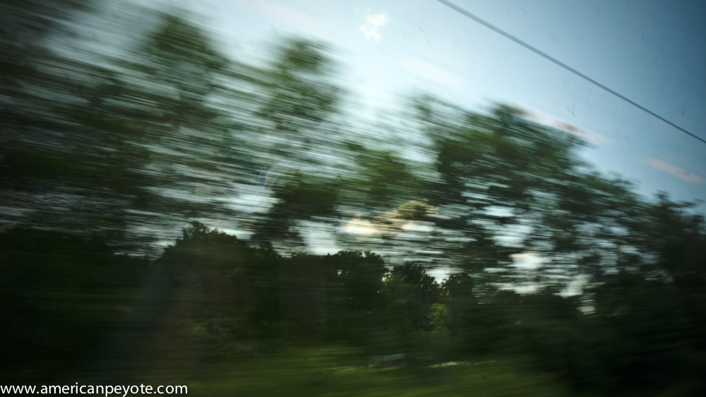 trainlandscapeswitzerland-06127