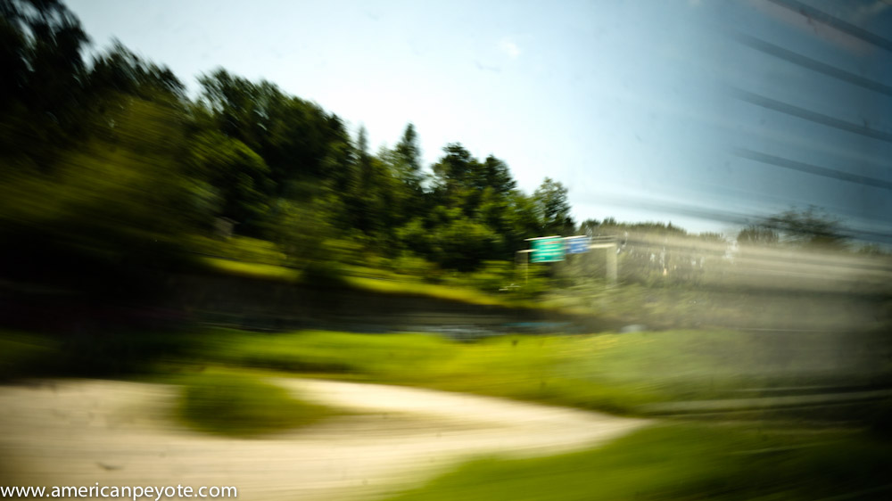 trainlandscapeswitzerland-06135