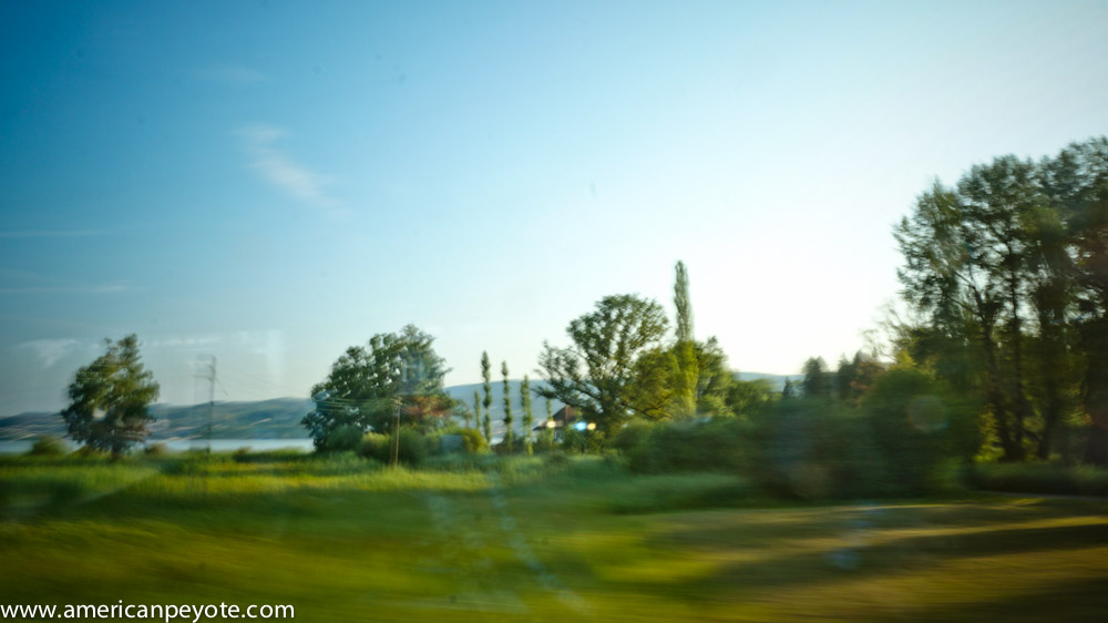 trainlandscapeswitzerland-06260