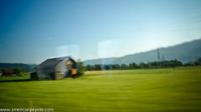 TrainLandscapeSwitzerland-06281